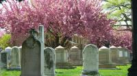 Historic Congressional Cemetery lead image